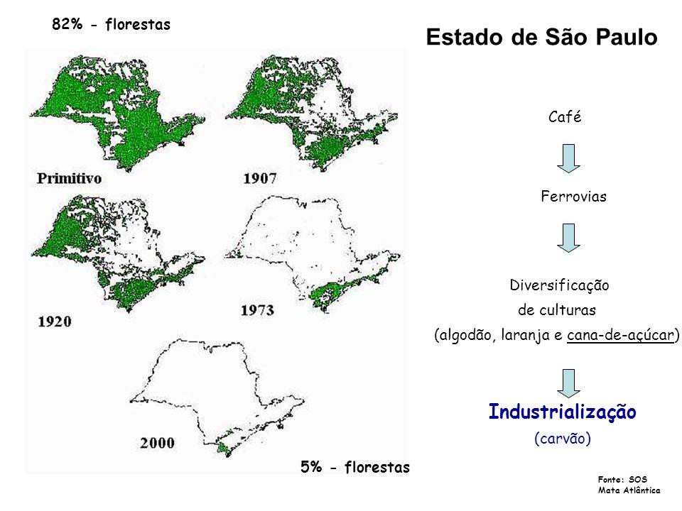 Estado de São Paulo 82% - florestas 5% - florestas Café Ferrovias Diversificação de culturas (algodão, laranja e cana-de-açúcar) Industrialização (car