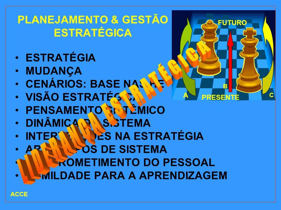PLANEJAMENTO & GESTÃO ESTRATÉGICA ESTRATÉGIA MUDANÇA CENÁRIOS: BASE NAS HE VISÃO ESTRATÉGICA PENSAMENTO SISTÊMICO DINÂMICA DO SISTEMA INTERVENÇÕES NA