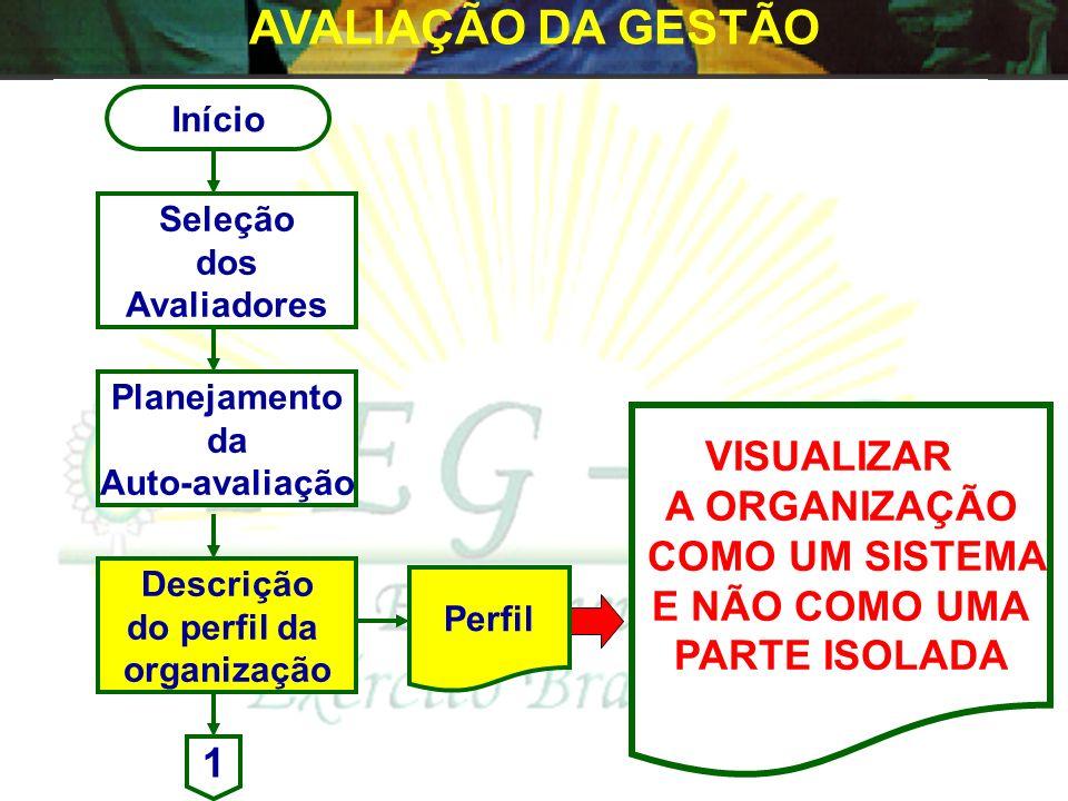 Início Seleção dos Avaliadores Pessoas indicadas pelo Cmdo/Ch/Dir e que possam representar o sistema para condução da Auto-avaliação. (EM, representan