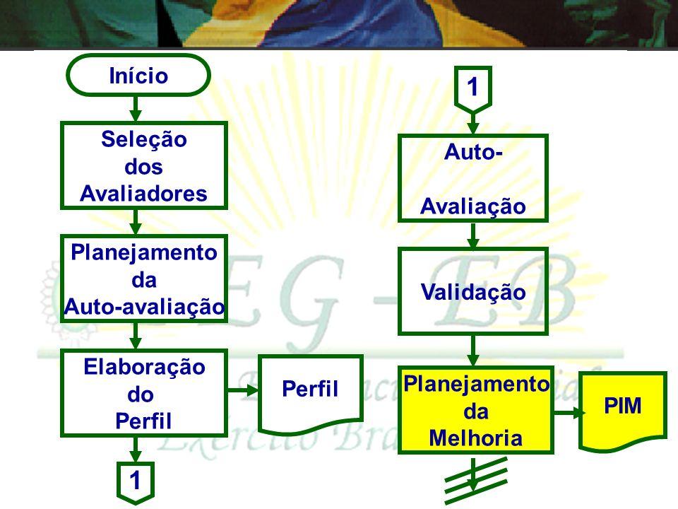 Início Seleção dos Avaliadores Auto- avaliação Elaboração do Perfil Validação Planejamento da auto-avaliação Perfil 1 1 - Conduzida pelo Escalão Super