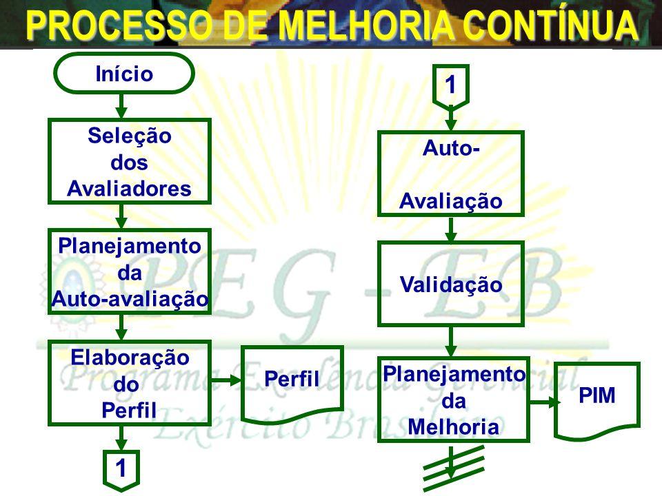 PROCESSO DE MELHORIA CONTÍNUA Início Seleção dos Avaliadores Planejamento da Melhoria Auto- Avaliação Elaboração do Perfil Validação Planejamento da Auto-avaliação Perfil PIM 1 1