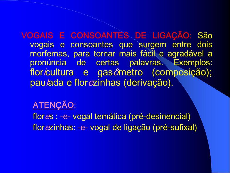 AFIXOS: São elementos que se juntam a radicais para formar novas palavras com significados diferentes. São eles: PREFIXO: É o afixo que aparece antes