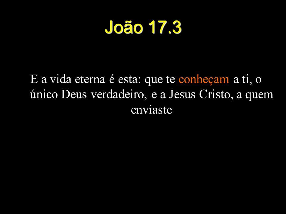 João 17.3 E a vida eterna é esta: que te conheçam a ti, o único Deus verdadeiro, e a Jesus Cristo, a quem enviaste