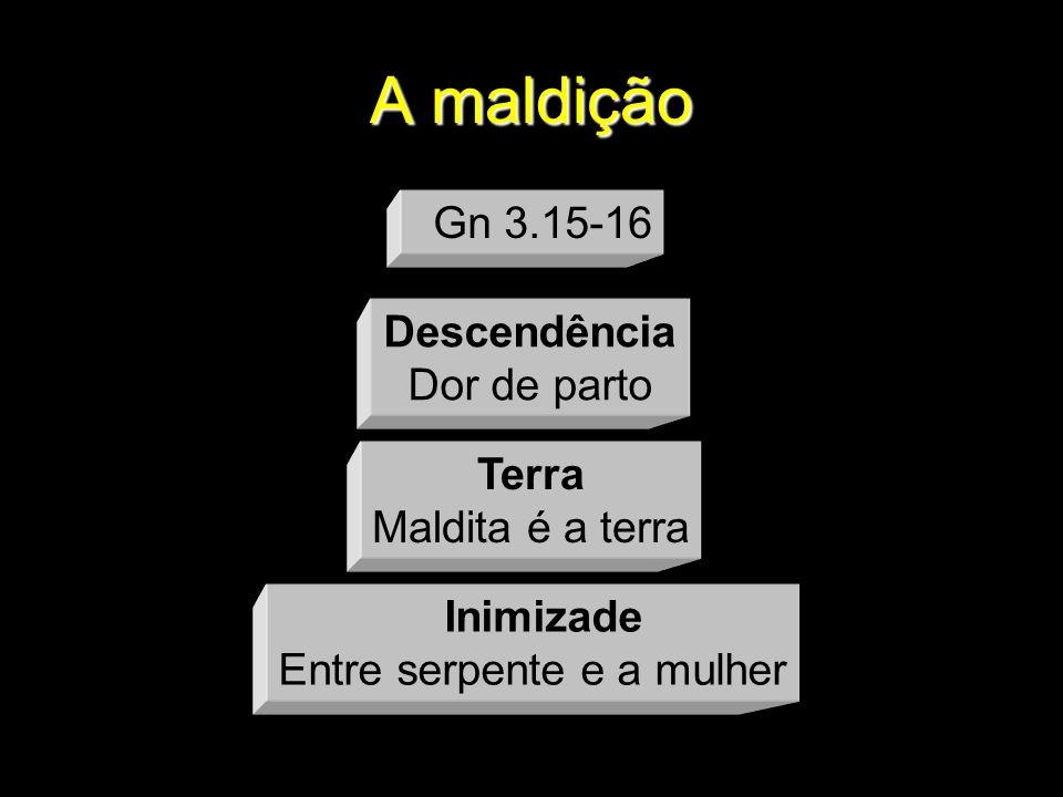 A maldição Descendência Dor de parto Terra Maldita é a terra Inimizade Entre serpente e a mulher Gn 3.15-16