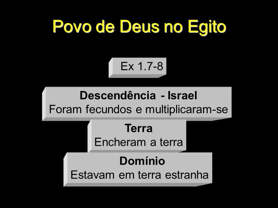 Povo de Deus no Egito Descendência - Israel Foram fecundos e multiplicaram-se Terra Encheram a terra Domínio Estavam em terra estranha Ex 1.7-8