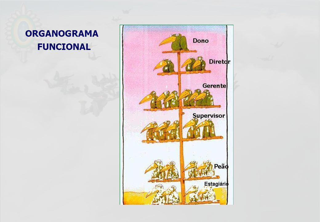 UFF – MBA – ANÁLISE E MODELAGEM DE PROCESSOS – PROF A MARIA ELISA MACIEIRA ORGANOGRAMA FUNCIONAL