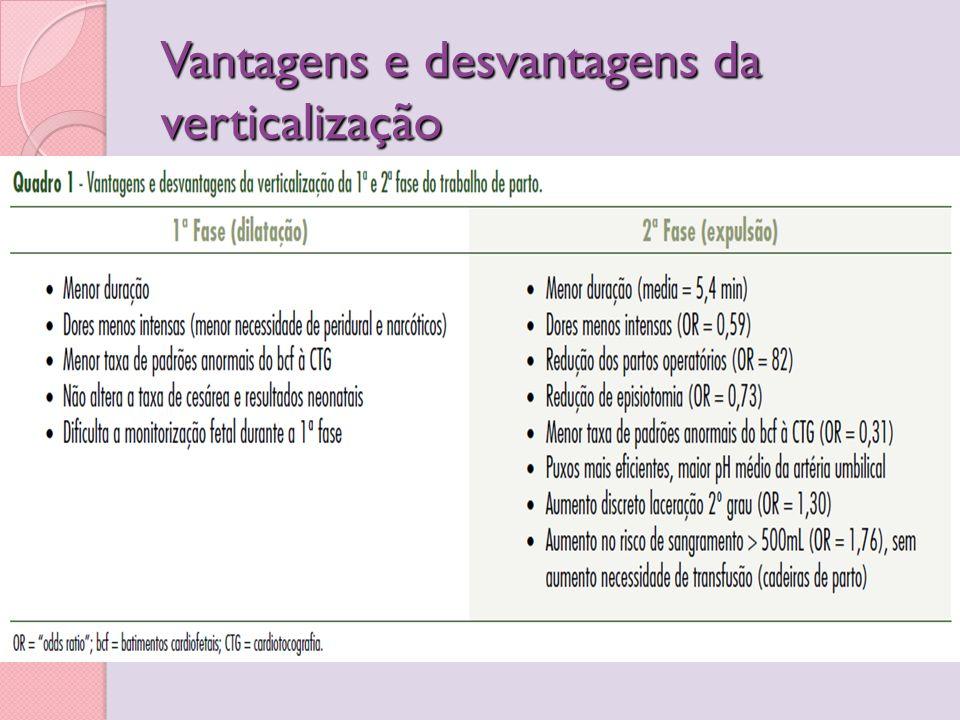 Vantagens e desvantagens da verticalização