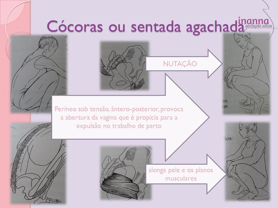 Cócoras ou sentada agachada Períneo sob tensão, ântero-posterior, provoca a abertura da vagina que é propícia para a expulsão no trabalho de parto alo
