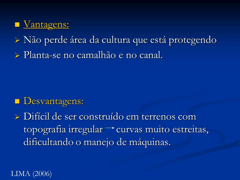Vantagens: Vantagens: Vantagens: Não perde área da cultura que está protegendo Não perde área da cultura que está protegendo Planta-se no camalhão e n