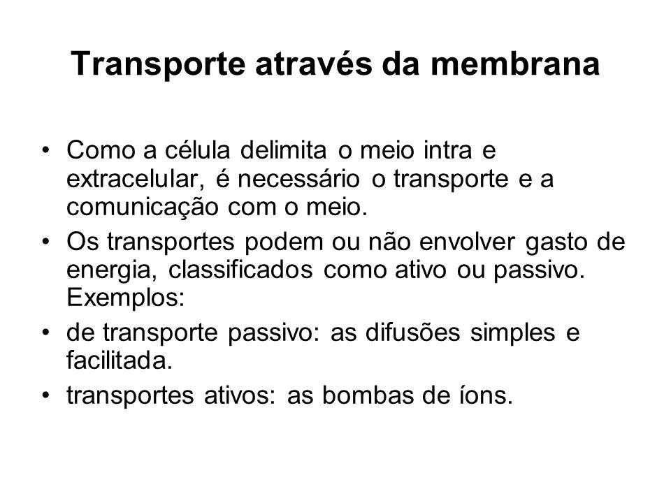 Transporte através da membrana Como a célula delimita o meio intra e extracelular, é necessário o transporte e a comunicação com o meio. Os transporte