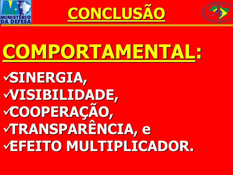 COMPORTAMENTAL: SINERGIA, SINERGIA, VISIBILIDADE, VISIBILIDADE, COOPERAÇÃO, COOPERAÇÃO, TRANSPARÊNCIA, e TRANSPARÊNCIA, e EFEITO MULTIPLICADOR. EFEITO