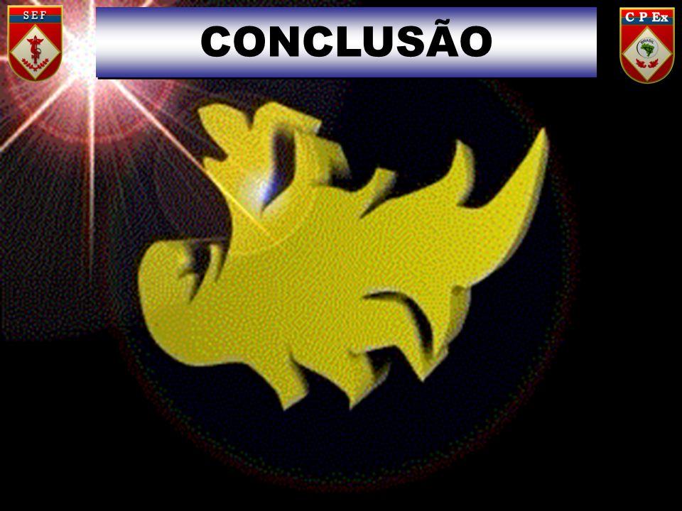 CONCLUSÃO 22