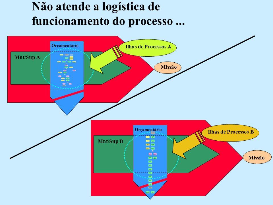Não atende a logística de funcionamento do processo... Missão Orçamentário Ilhas de Processos A Mnt/Sup A Missão Orçamentário Mnt/Sup B Ilhas de Proce
