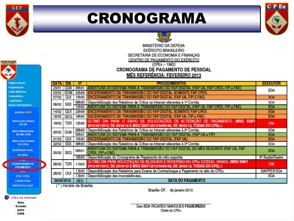 13 CRONOGRAMA