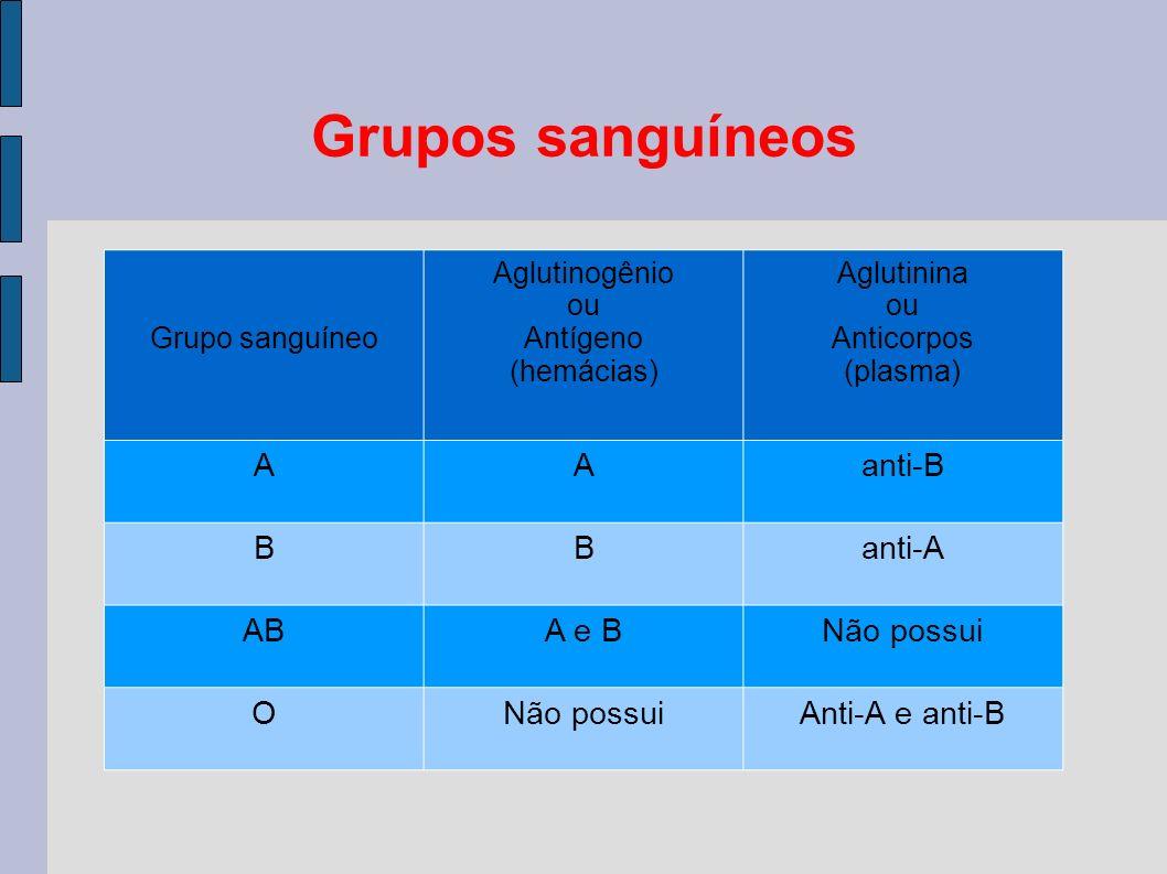 Grupos sanguíneos Grupo sanguíneo Aglutinogênio ou Antígeno (hemácias) Aglutinina ou Anticorpos (plasma) AAanti-B BBanti-A ABA e B Não possui O Anti-A