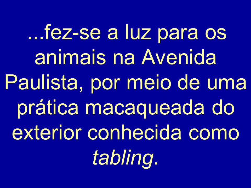 ...fez-se a luz para os animais na Avenida Paulista, por meio de uma prática macaqueada do exterior conhecida como tabling.