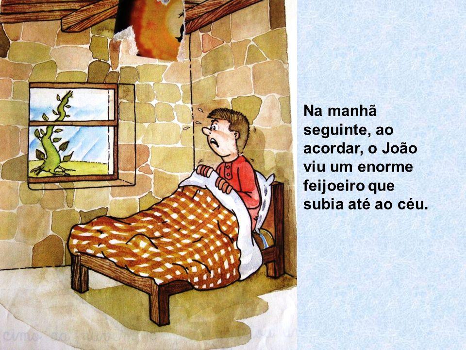 Na manhã seguinte, ao acordar, o João viu um enorme feijoeiro que subia até ao céu.