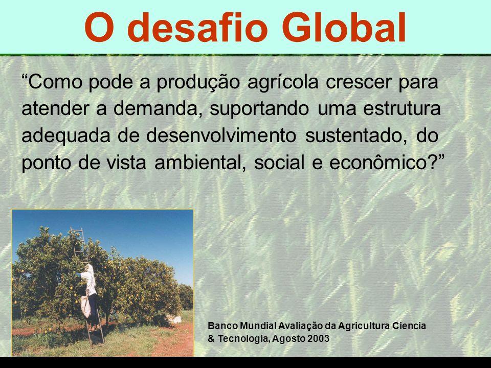 mzuppi.cursos@gmail.com Educação e Treinamento do Homem do Campo O DESAFIO GLOBAL Como pode a produção agrícola crescer para atender a demanda, suport