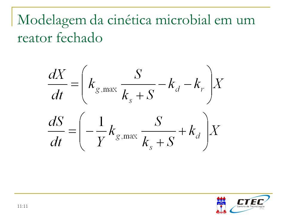 11:11 Modelagem da cinética microbial em um reator fechado