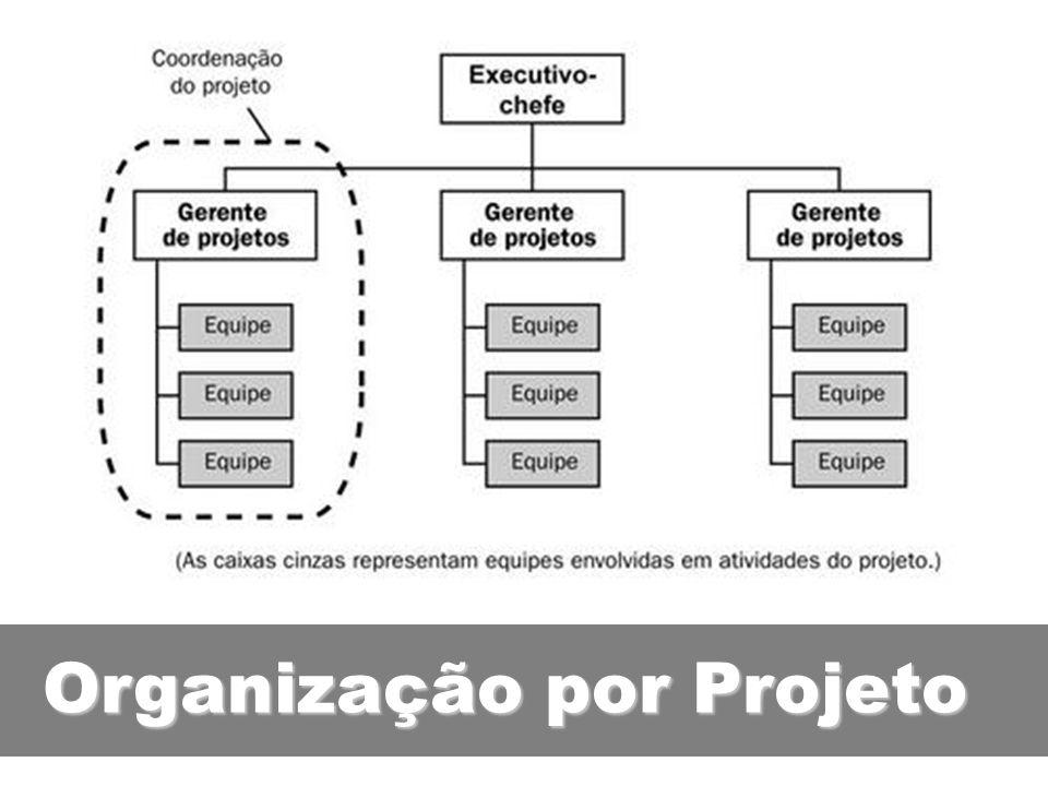 Organização por Projeto