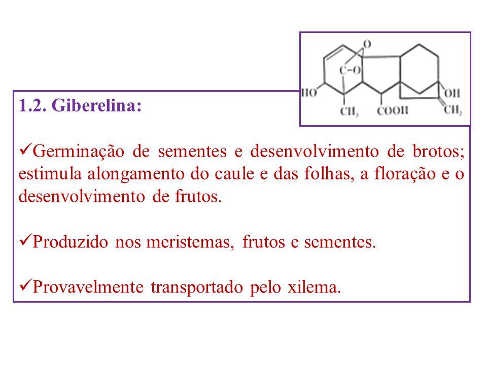 1.2. Giberelina: Germinação de sementes e desenvolvimento de brotos; estimula alongamento do caule e das folhas, a floração e o desenvolvimento de fru
