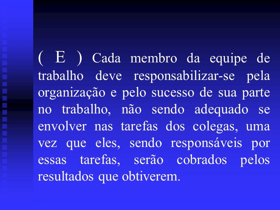 ( E ) Cada membro da equipe de trabalho deve responsabilizar-se pela organização e pelo sucesso de sua parte no trabalho, não sendo adequado se envolv