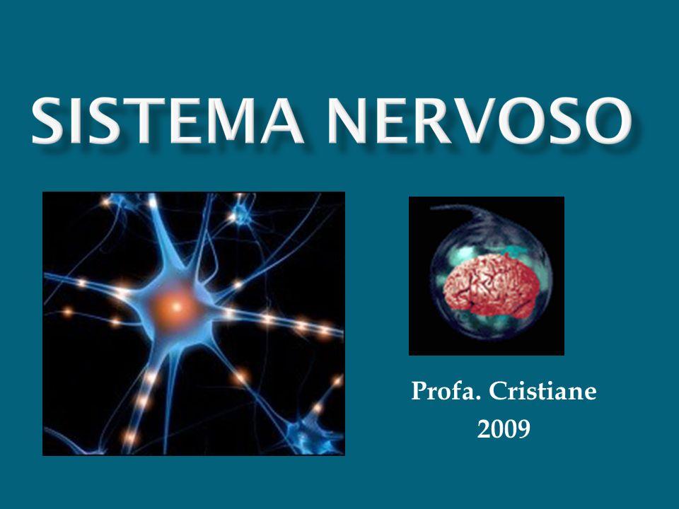 Profa. Cristiane 2009