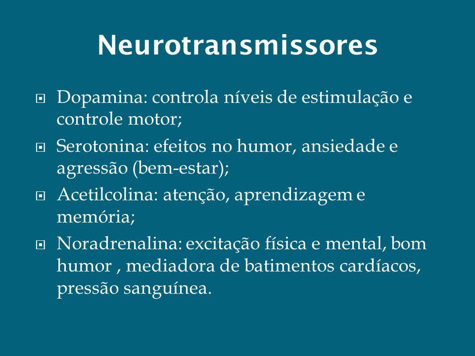 Neurotransmissores Dopamina: controla níveis de estimulação e controle motor; Serotonina: efeitos no humor, ansiedade e agressão (bem-estar); Acetilco