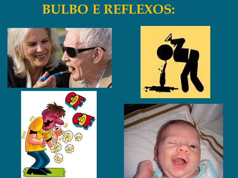 BULBO E REFLEXOS: