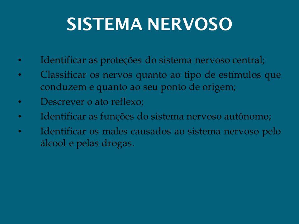 SISTEMA NERVOSO Identificar as proteções do sistema nervoso central; Classificar os nervos quanto ao tipo de estímulos que conduzem e quanto ao seu po