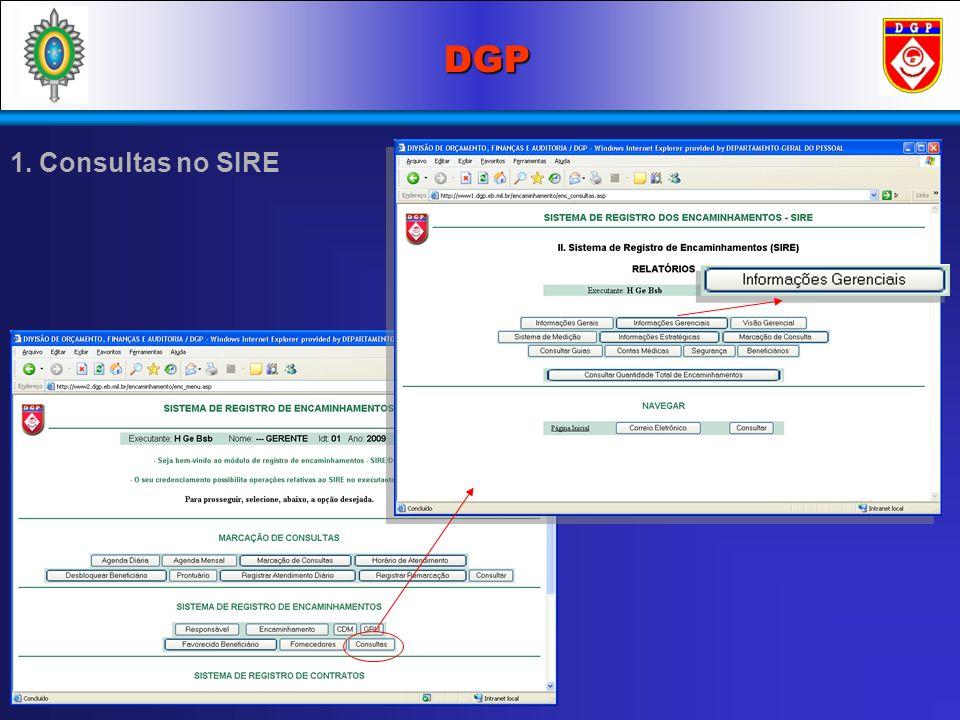 DGP 1. Consultas no SIRE