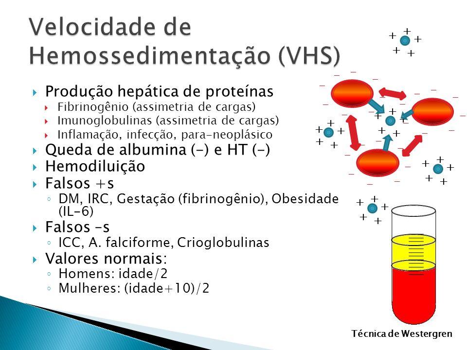 Produção hepática de proteínas Fibrinogênio (assimetria de cargas) Imunoglobulinas (assimetria de cargas) Inflamação, infecção, para-neoplásico Queda
