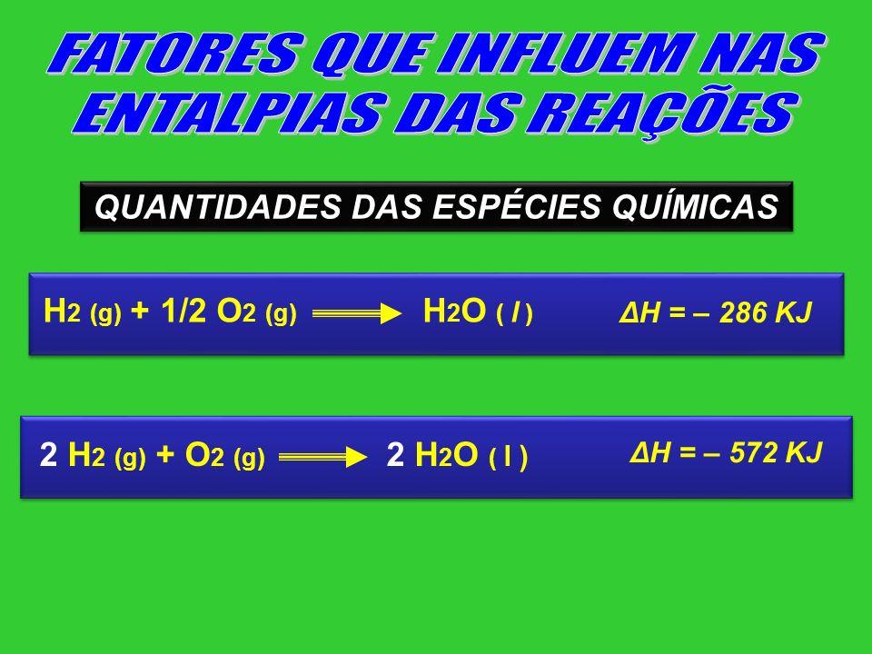 QUANTIDADES DAS ESPÉCIES QUÍMICAS H 2 (g) + 1/2 O 2 (g) H 2 O ( l ) ΔH = – 286 KJ 2 H 2 (g) + O 2 (g) 2 H 2 O ( l ) ΔH = – 572 KJ
