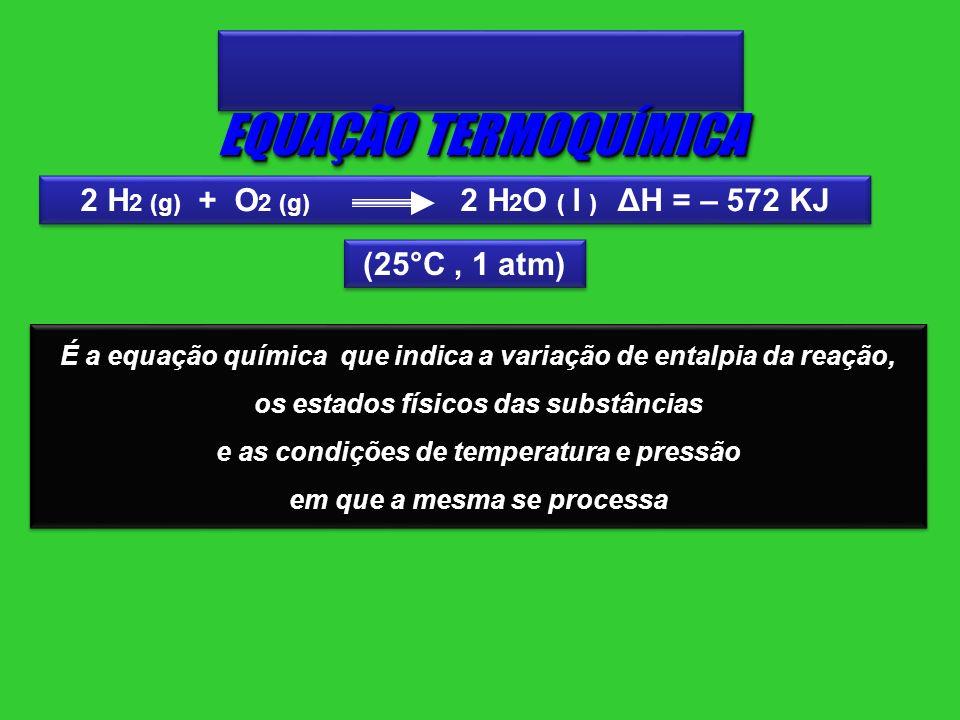 É a equação química que indica a variação de entalpia da reação, os estados físicos das substâncias e as condições de temperatura e pressão em que a m