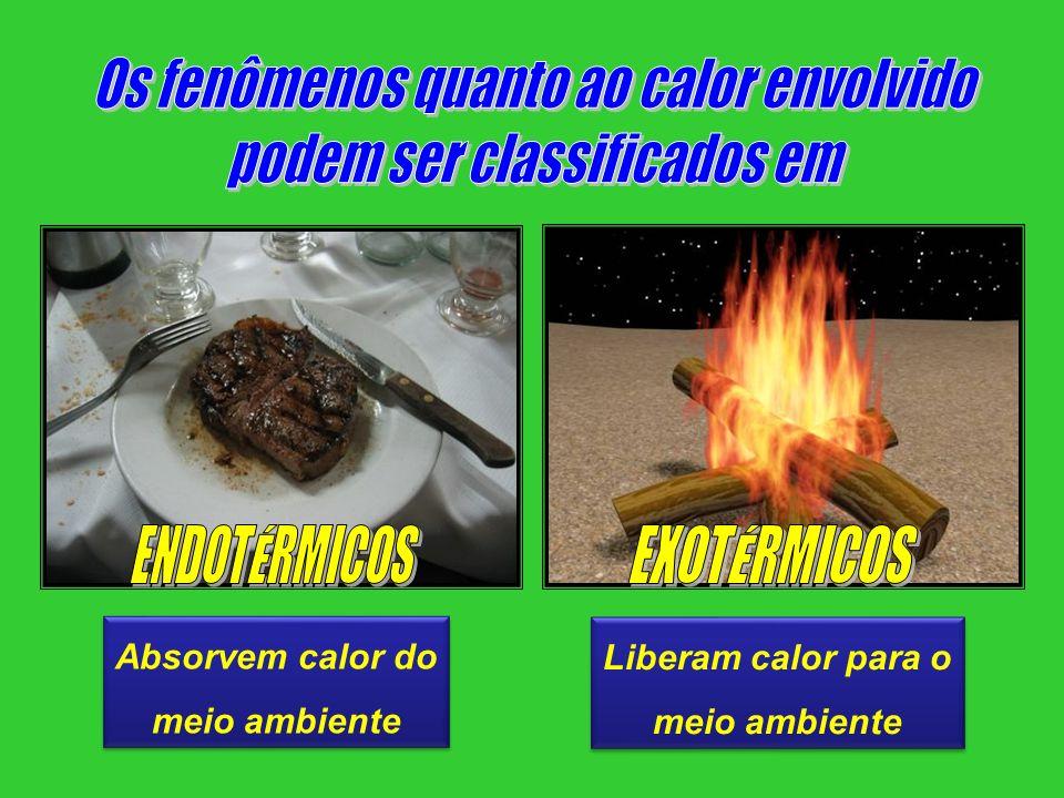 Absorvem calor do meio ambiente Absorvem calor do meio ambiente Liberam calor para o meio ambiente Liberam calor para o meio ambiente
