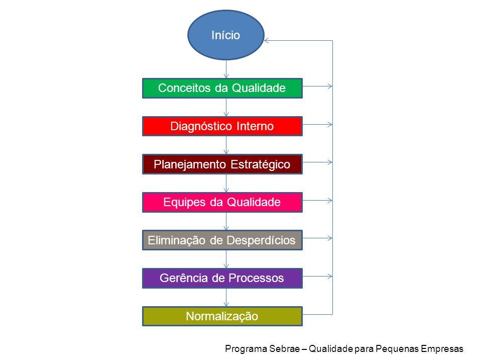 Início Conceitos da Qualidade Diagnóstico Interno Planejamento Estratégico Equipes da Qualidade Eliminação de Desperdícios Gerência de Processos Norma