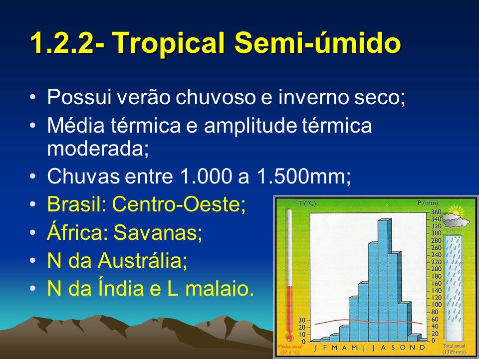1.2.3- Tropical Monçônico Possui verões quentes com chuvas torrenciais e invernos secos; As monçôes de verão provocam chuvas e as monçôes de inverno secas; Ex: S e SE da Ásia e L da África.