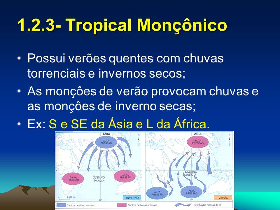 1.3- Subtropical Possui baixas médias térmicas e elevada amplitude térmica; Chuvas bem distribuídas; Ex: S do Brasil; S da África; S dos USA; L da Austrália; L da China.