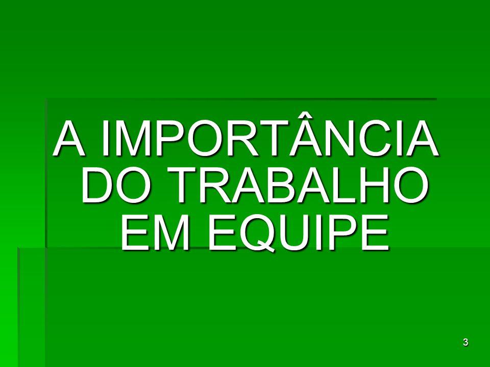 3 A IMPORTÂNCIA DO TRABALHO EM EQUIPE