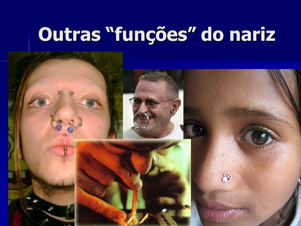 Outras funções do nariz