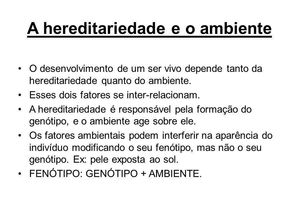 A hereditariedade e o ambiente O desenvolvimento de um ser vivo depende tanto da hereditariedade quanto do ambiente. Esses dois fatores se inter-relac
