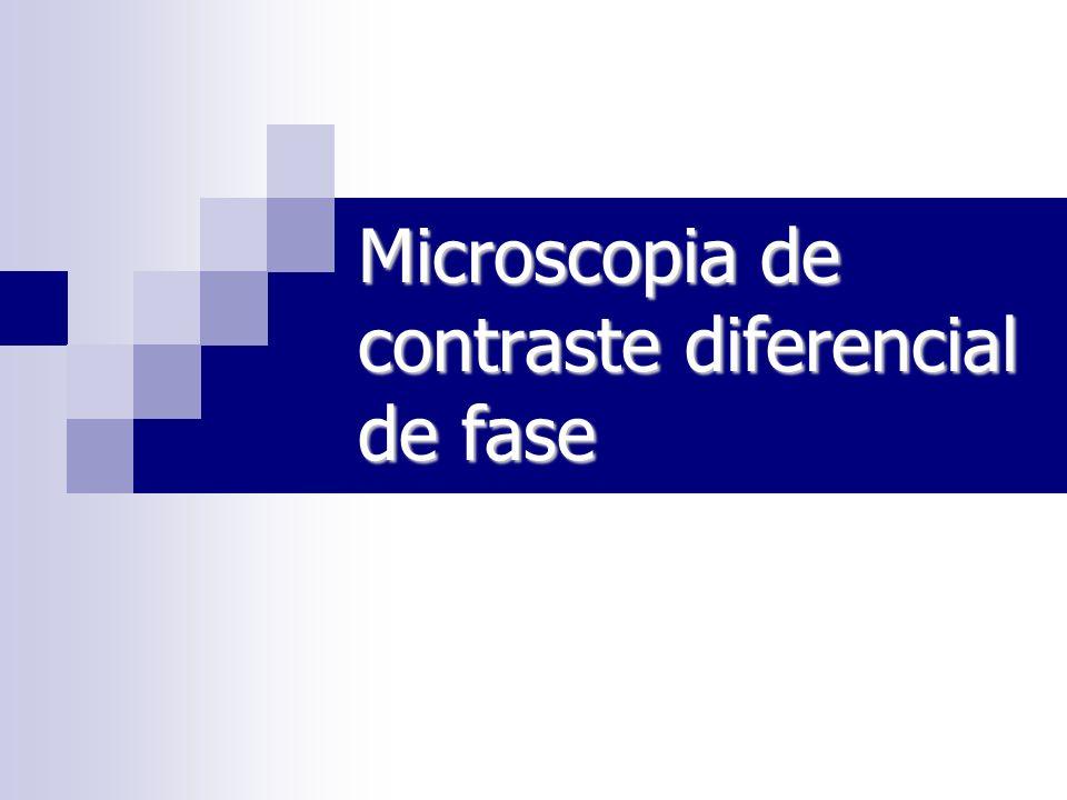 Contraste: diferença de iluminação entre amostras e os arredores ou o plano de fundo.