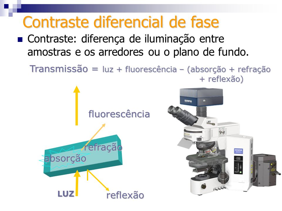 Conceito Conceito Técnica de contraste em que a luz plana polarizada incidente sobre a amostra passa por diferentes caminhos ópticos em pontos diversos da amostra, causando diferenças de intensidade de luz que passam por um 2º polarizador.