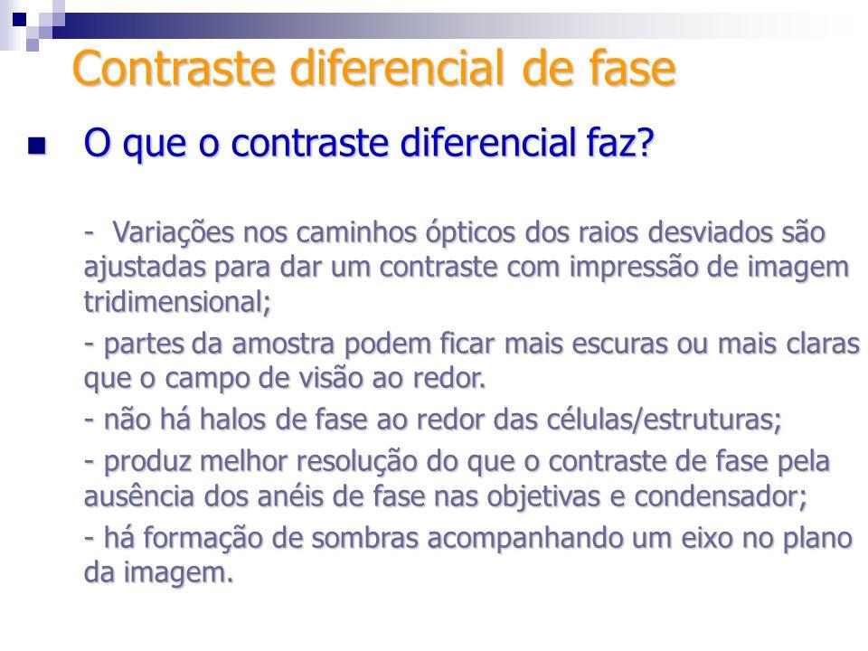 Configuração tradicional Configuração tradicional Trabalha-se nos planos da imagem conoscópica Contraste diferencial de fase Analisador Wollaston Filtro 1/4 Polarizador
