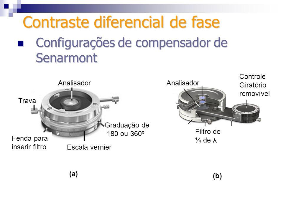 Configuração alternativa (de Senarmont) Configuração alternativa (de Senarmont) 1) Faz-se ajuste koehler; 2) coloca-se polarizadores cruzados, com o 1º na posição 45º e o 2º a 90º do 1º (campo de visão fica escuro); 3) Insere-se o filtro ¼ de na fenda apropriada; Contraste diferencial de fase