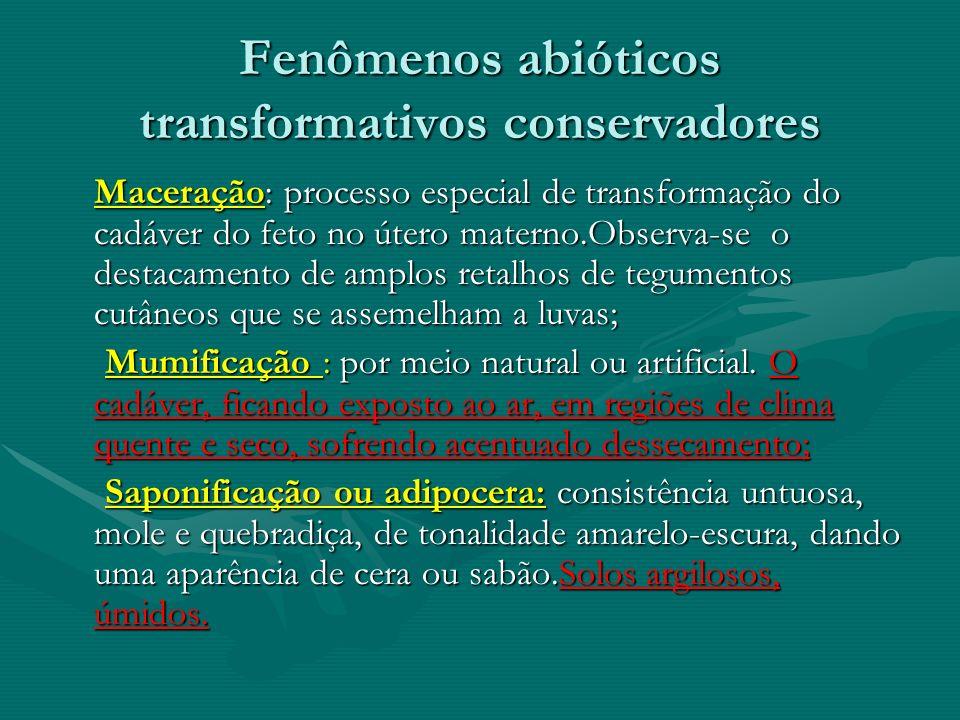 Fenômenos abióticos transformativos conservadores Maceração: processo especial de transformação do cadáver do feto no útero materno.Observa-se o desta
