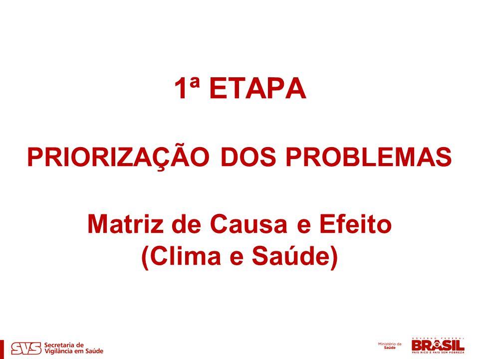 1ª ETAPA PRIORIZAÇÃO DOS PROBLEMAS Matriz de Causa e Efeito (Clima e Saúde)