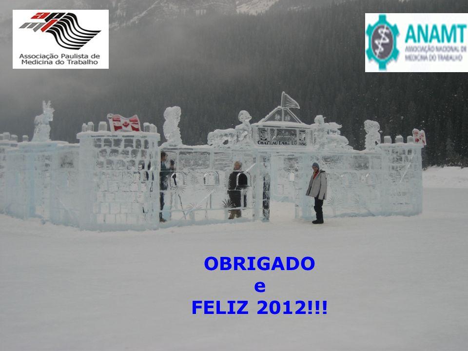 OBRIGADO e FELIZ 2012!!!