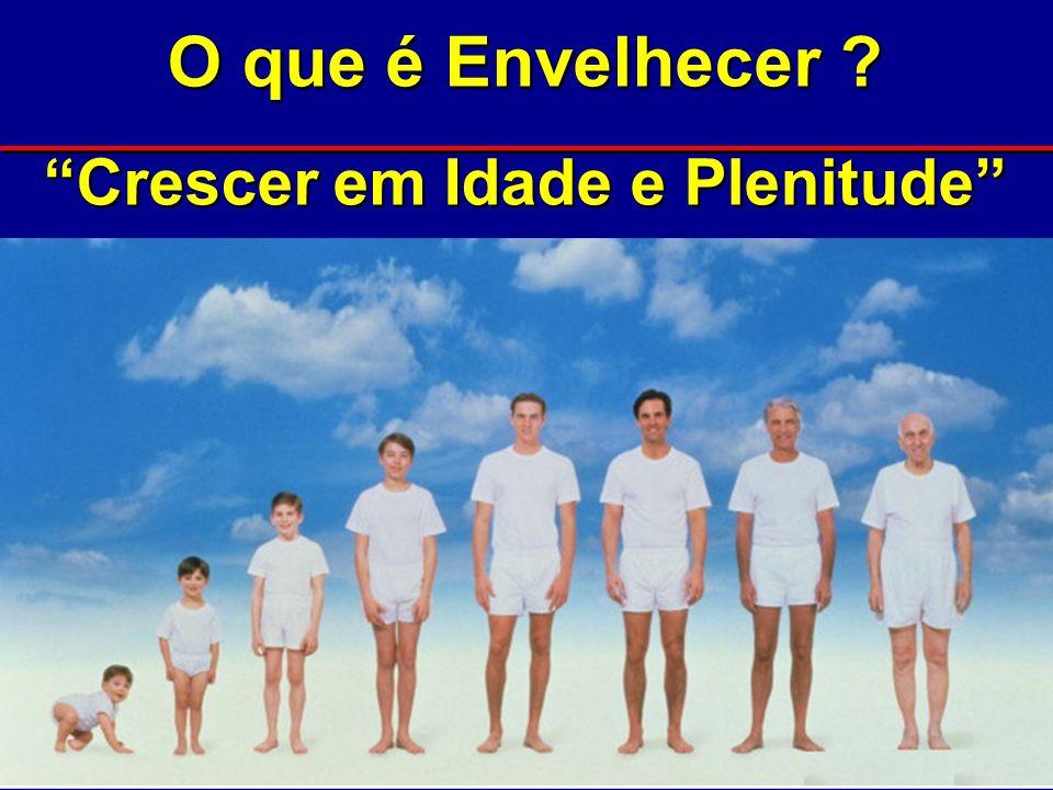 Instituto de Geriatria e Gerontologia da PUCRS – Porto Alegre, RS l Home page: www.pucrs.br/igg l Via OPAS: whocc@paho.org l EMail: igg@pucrs.br l Facsimile: +51-3320-3862 * Porto Alegre