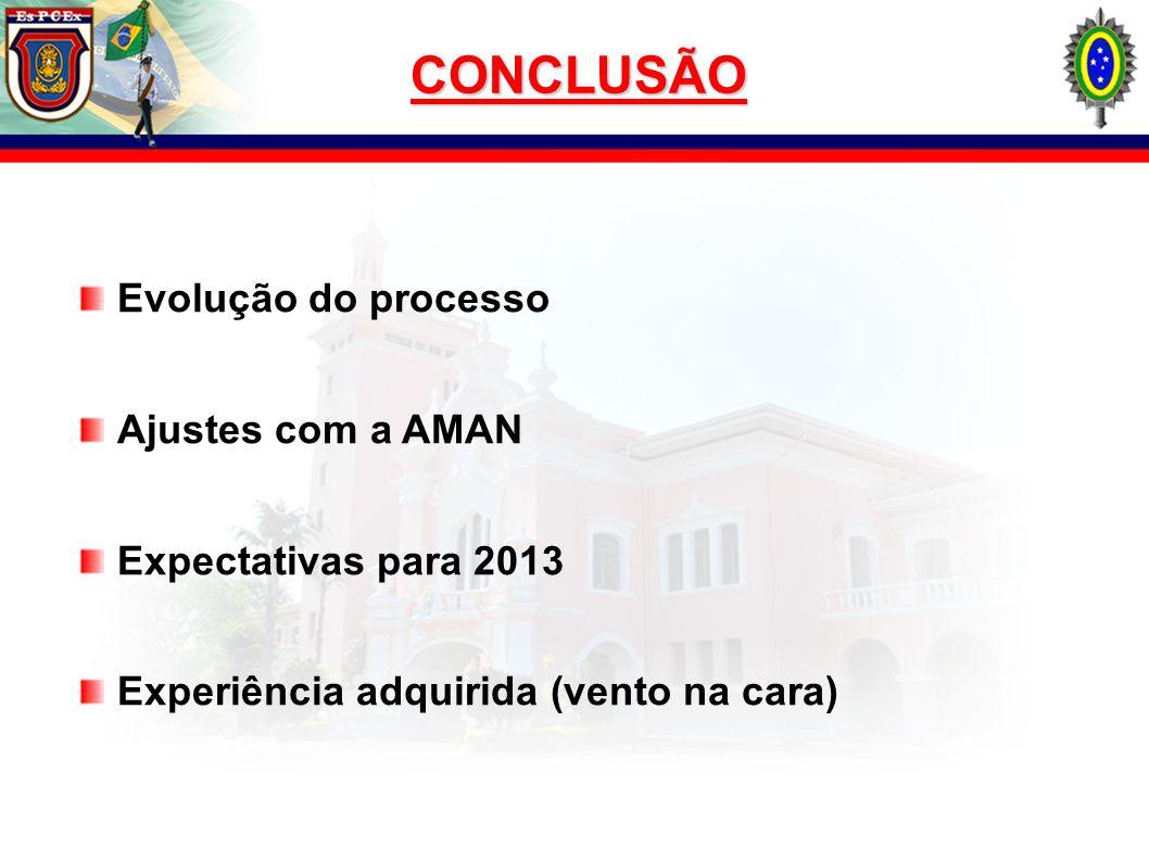 CONCLUSÃO Evolução do processo Ajustes com a AMAN Expectativas para 2013 Experiência adquirida (vento na cara)